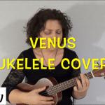 Venus ukelele cover