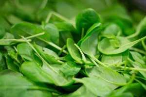 Spinach-2216967__480
