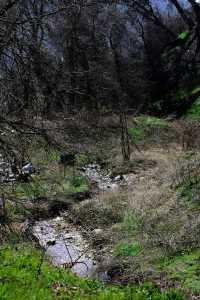 Oak Glen Nature Trail a Day Hike Idea