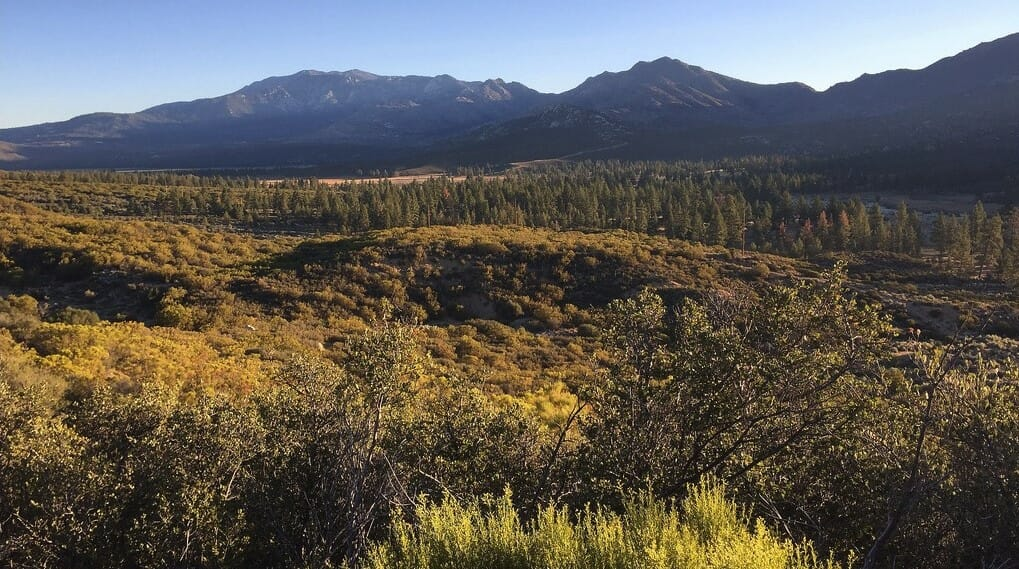 Ramona Trail (to Tool Box Spring) Ideal for Hike