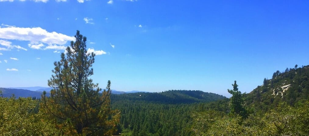Idyllwild Offers Hikers Escape from Scorching Heat