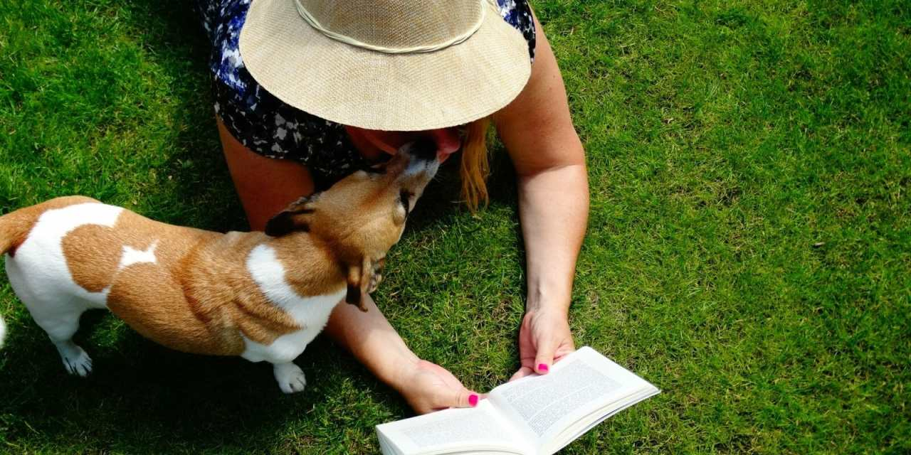 Prizes, Celebration Conclude Summer Reading Program