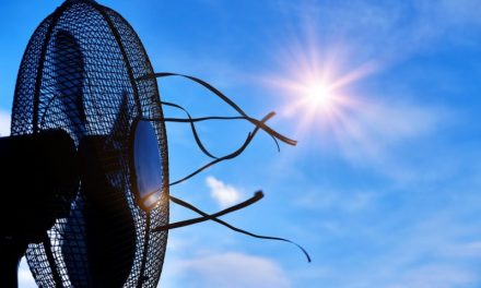 Cool Centers Offer Escape From Extreme Heat
