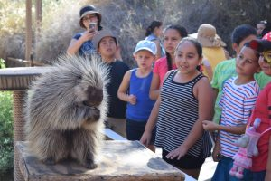 Celebrate Hispanic Heritage Month at Zoo