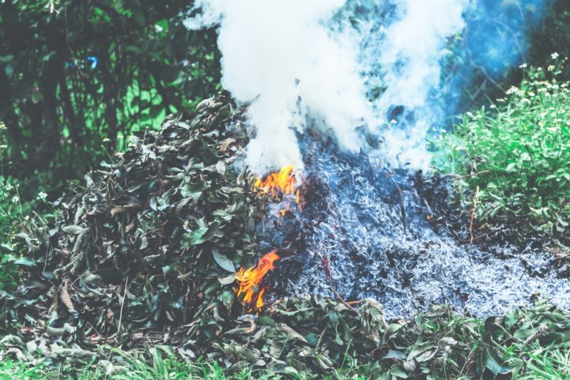 Green Waste Piles Targeted to Reduce Fire Hazards