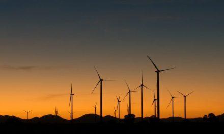 Trump Slams Palm Springs Windmills [VIDEO]