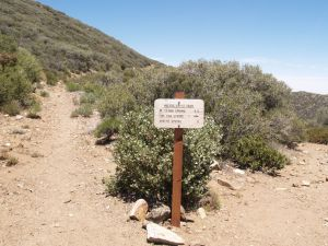 Pacific Crest Trail Heads Through Chaparral