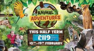 Chessington Holidays February Half Term Breaks from £119 per family
