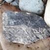 Split limestone nodule with Stigmaria ficoides