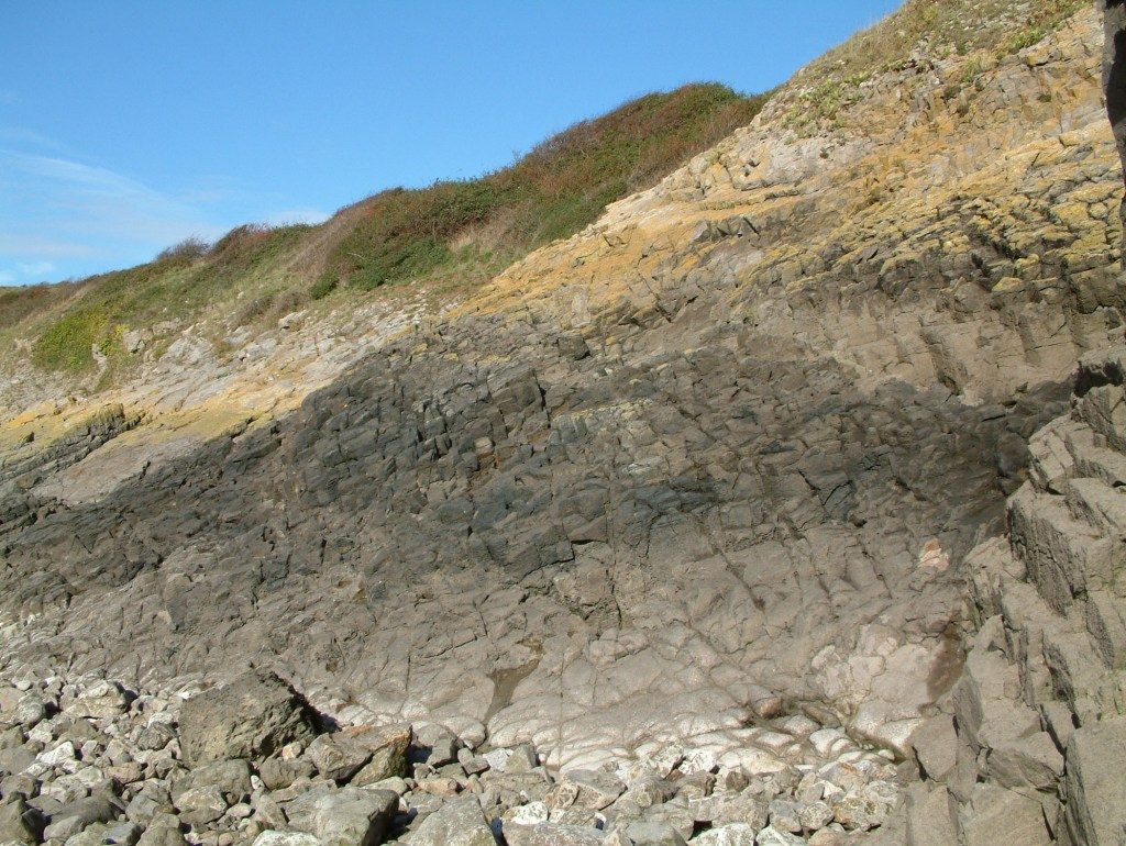Weston-Super-Mare – UK Fossil Collecting