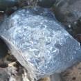 Brachiopod fossils in a block