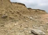 Cliff End East, Dorset