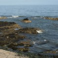 Portmarnock beach (25)