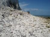 Chalk rock fall