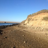 Fossil collecting at Pirates Cove