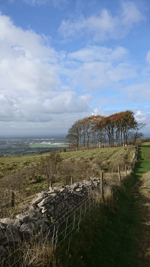 Cheltenham Racecourse from Cleeve Common