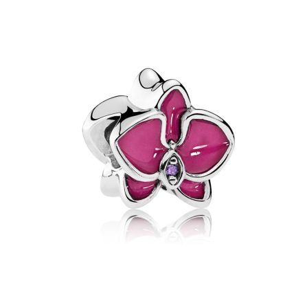 Cute Pandora charm you'll love