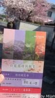 白龍園・桜14