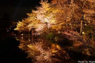 清水寺・桜05
