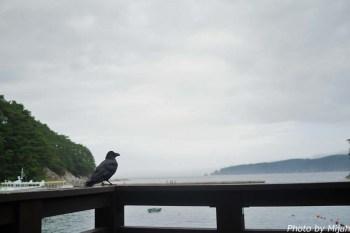 浄土ヶ浜29