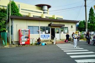 ainoshima-neko30
