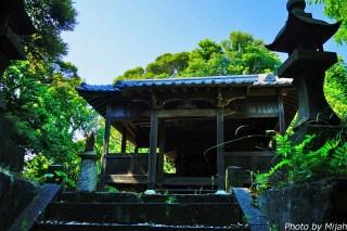 umashima-neko21