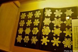 snowmuseum19