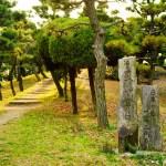 蘇鉄山 ~大阪・堺市、一等三角点のある日本一低い山~