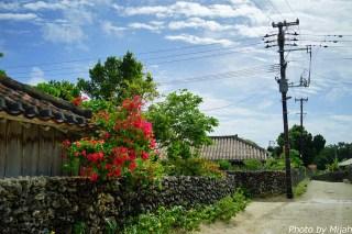 taketomijima11