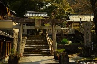 shikokutabi-day4-09