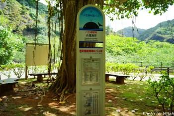 ogasawara-day5-39