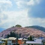 春、桜色に染まる山、弘法山 ~長野県松本市の歴史的古墳に見る桜の情景~