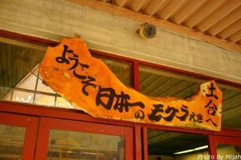 doai-station44