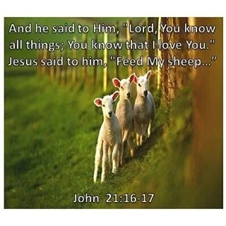 "And he said to Him, ""Lord, You know all things; You know that I ..."