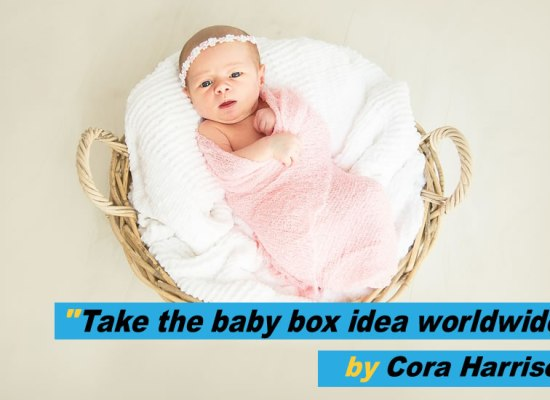 Loose Change - Take the baby box idea worldwode by Cora Harrison