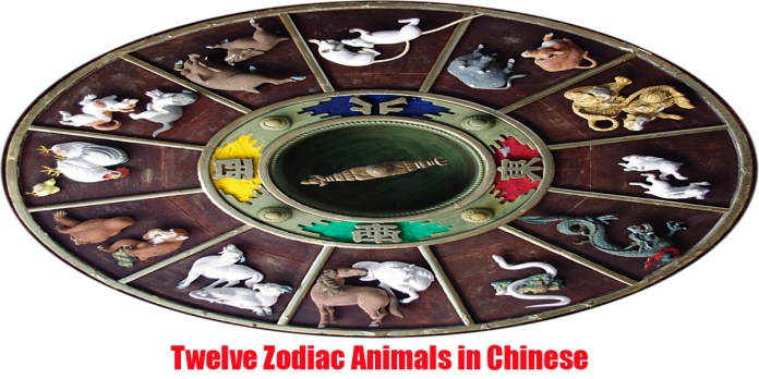 12 zodiac animals in chinese