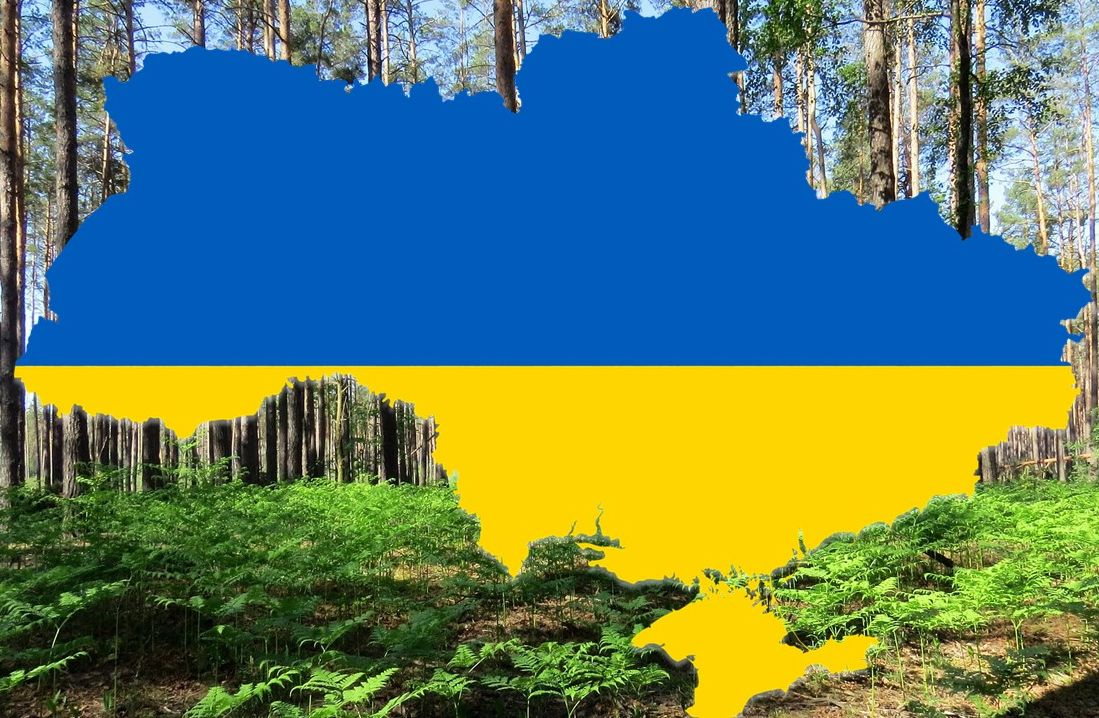 ForestUkraine, Entwicklung von Bewertungstools zur Steigerung der Qualität von geförderten Waldprojekten in der Ukraine