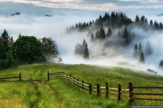 Mystical fog over the Ukrainian Carpathians · Ukraine ...
