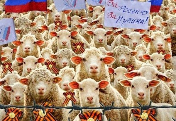 Молчание русских ягнят.