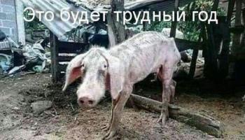Эксперты предрекли рублю обвал после новогодних пьянок