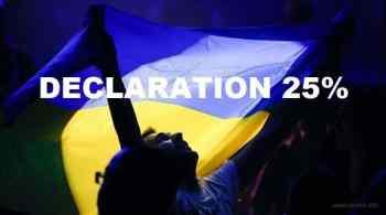 Декларация 25%