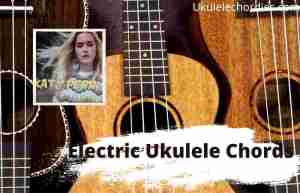Read more about the article Electric Ukulele Chords By Katy Perry