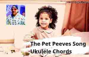 Read more about the article The Pet Peeves Song Ukulele Chords By Dude Perfect