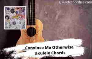 Read more about the article Convince Me Otherwise Ukulele Chords By Maroon 5 with H.E.R.