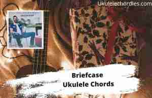 Read more about the article Briefcase Ukulele Chords By Walker Hayes