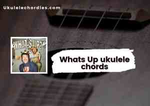 Read more about the article Whats Up Ukulele chords by Mom Jeans.