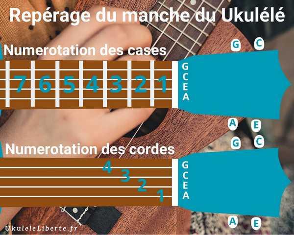 Visualisation des Numérotations des cases et des cordes du Ukulélé pour apprendre les tablatures