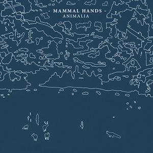 mammal-hands