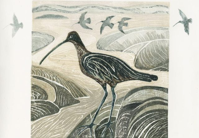 No. 10 Curlews in the Estuary