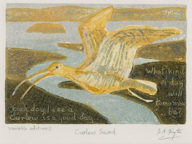 curlew postcard